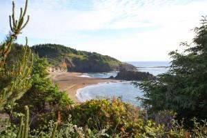 Surfrider Resort - Enjoy the Scenery