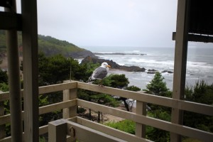 Surfrider Resort - Soak In The View
